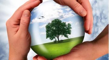Mentalidade Ecológica - Adopte alguns Hábitos sem Dificuldade
